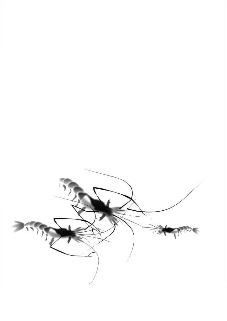 才能使画出来的虾有新鲜透明