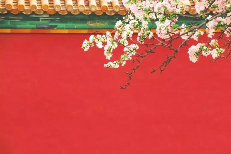 -->   春天,是花与人比娇的开始。   暖风得意,细雨消愁,随着阳光爬上枝头,百花初绽,那嗅不尽的芳香,看不尽的花色,便成了许多人的念想。看花、赏花、戏花、拍花......就成了春日旅行的主题。   可怎样才能拍出人与花共美的大作呢?下面为大家整理了一些春天拍照的技巧,让你留住这花样的年华!   1、构图   正所谓,只要学会了构图,那你离大片就只差ps的距离了。   对角线构图:这种构图方式主要适用于拍摄带有枝干的花朵,以其枝干为对角线,但切记不要铺满整幅画面,两侧留白,结尾留白,这样就会显得更